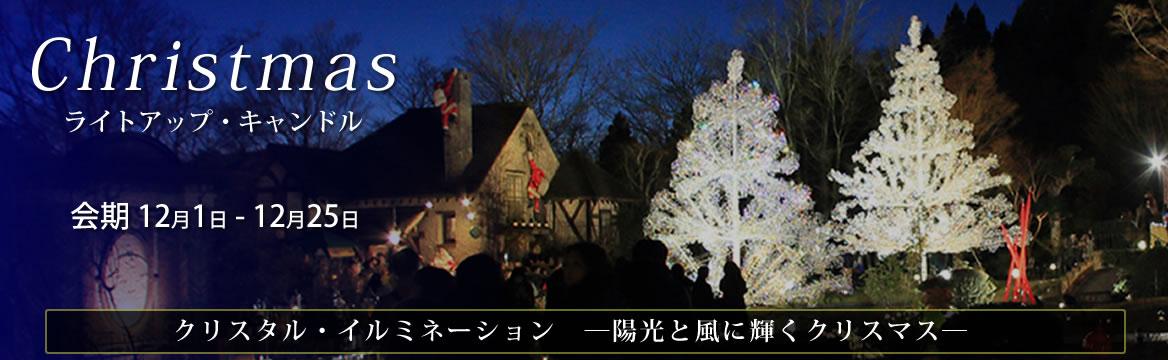クリスマス特集 クリスタル・イルミネーション ─陽光と風に輝くクリスマス─